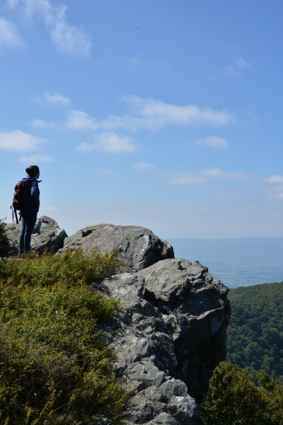At Hawksbill Mountain, the highest peak in Shenandoah National Park