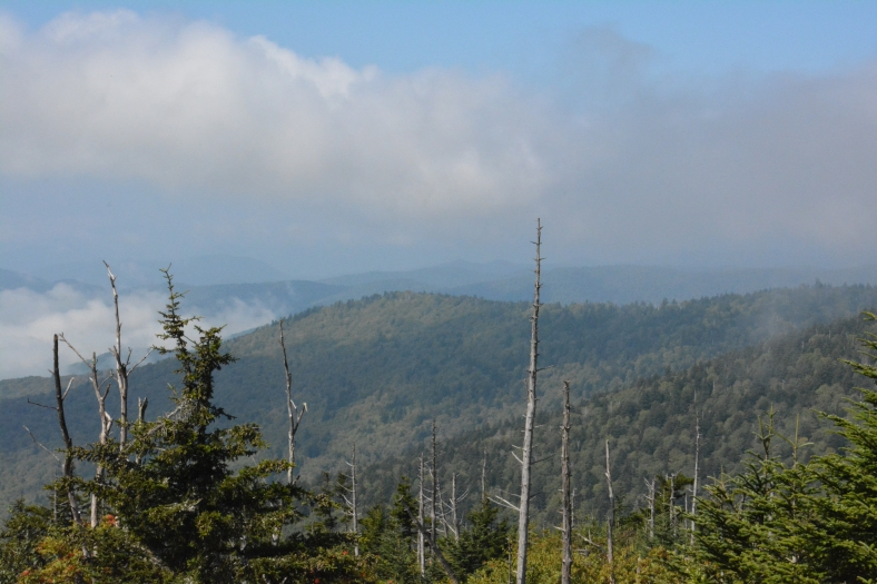 A camper's day begins when the mist rolls off the mountains
